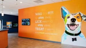 Dogtopia-Retail-Store-Graphics-Work-Hero-Slider-Carousel-9
